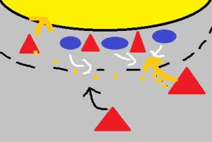 Ein Spielzug für sieben Feldspieler